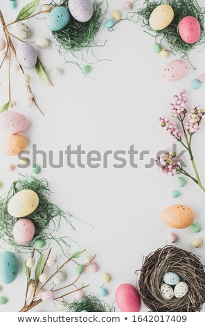 Easter bunny in grass to lay an egg in nest Stock photo © orensila