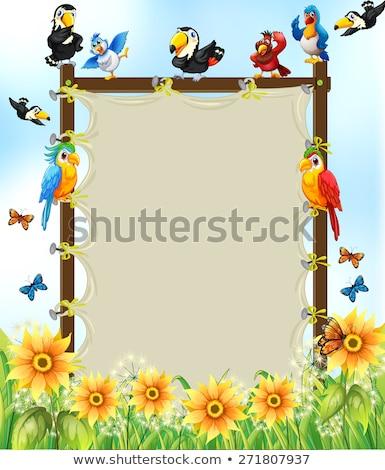 многие · птица · баннер · иллюстрация · дерево - Сток-фото © colematt