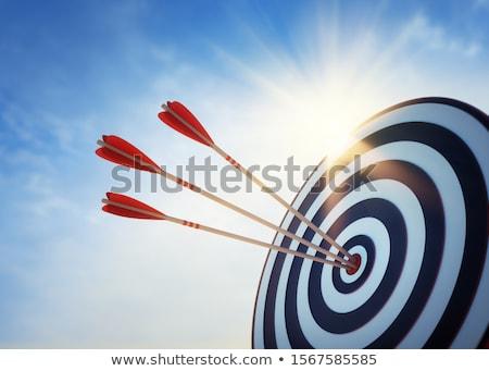 Pijlen target 3d illustration geïsoleerd witte business Stockfoto © montego