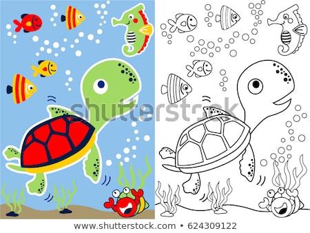 черепаха характер цвета страница черно белые Сток-фото © izakowski