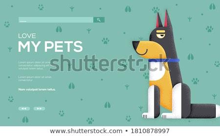 Pet friendly place concept banner header Stock photo © RAStudio