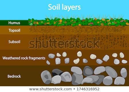 Diagrama solo camadas terra ilustração Foto stock © bluering