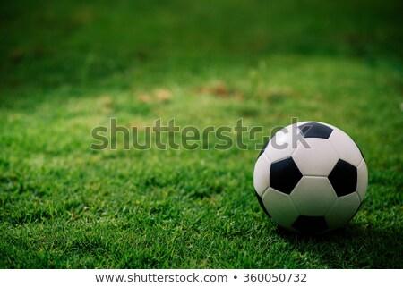 新しい 新しく 人工的な サッカー ストックフォト © brianguest