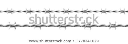 колючую проволоку набор вектора коллекция современных Сток-фото © pikepicture