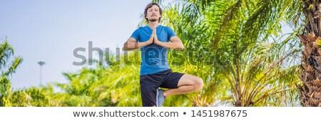 Człowiek jogi tropikalnych parku banner długo Zdjęcia stock © galitskaya