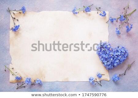 Felicitatie frame papier valentijnsdag harten feestelijk Stockfoto © artjazz