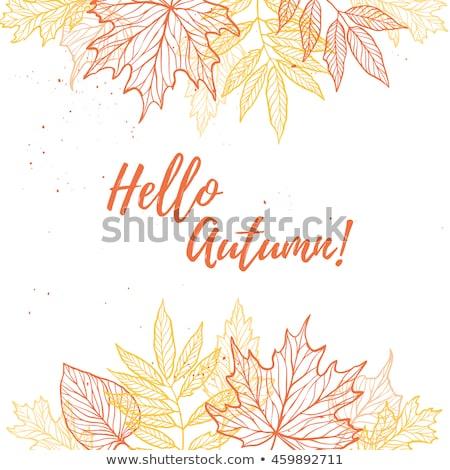Merhaba sonbahar afiş kuru yaprakları Stok fotoğraf © barsrsind