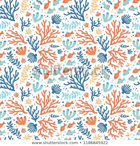 Végtelenített terv tenger teremtmények korall illusztráció Stock fotó © bluering