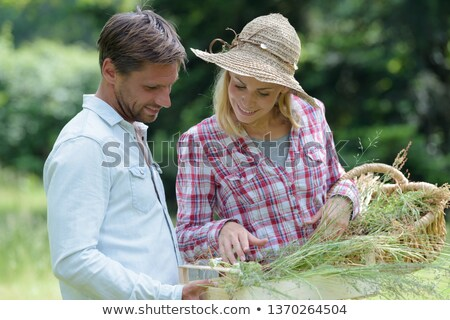 Couple collecting chestnuts in the woods Stock photo © photography33