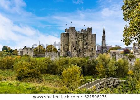 Trim Castle Stock photo © rafalstachura