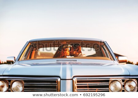 smiling couple embraced in front of a car stock photo © photography33