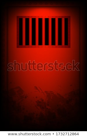 Jail Cell Door Locked Stock photo © albund