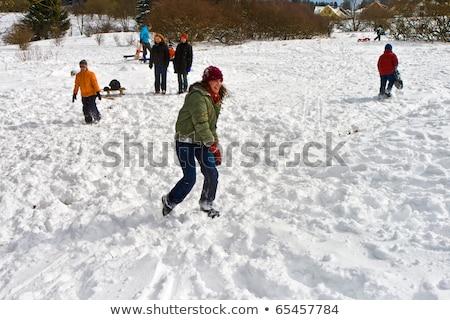 Kinderen sneeuwbal strijd witte mooie kinderen Stockfoto © meinzahn