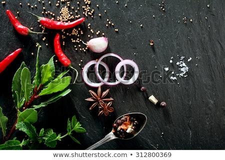 starfish · concha · pedras · branco · água · peixe - foto stock © deyangeorgiev