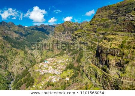 Madeira bergen rond centraal Portugal natuur Stockfoto © dinozzaver