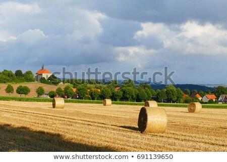 Apátság templom kukoricamező kilátás égbolt felhők Stock fotó © anmalkov