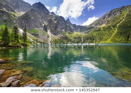 estanque · parque · Polonia · cielo · agua · naturaleza - foto stock © nature78