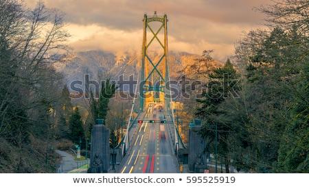 Kapı köprü Vancouver gece gökyüzü su Stok fotoğraf © jameswheeler