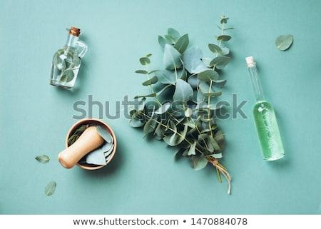 Naturopathie fraîches herbes épices blanche nature Photo stock © joker