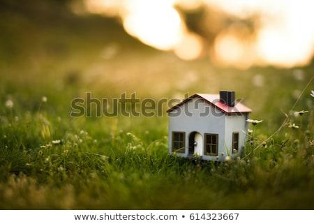 speelgoed · huis · gras · groen · gras · afbeelding · bloem - stockfoto © Pruser