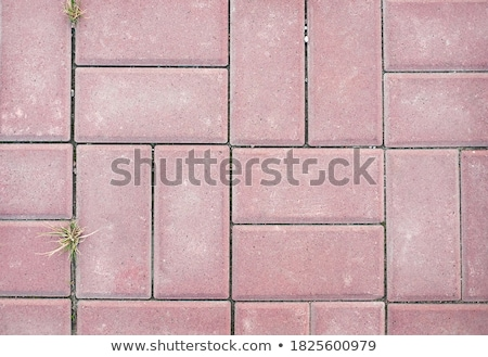 Gray Paving Slabs - Small Squares and Rectangles. Stock photo © tashatuvango