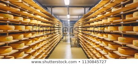 Kaas fabriek kamer business industrie Stockfoto © rmbarricarte