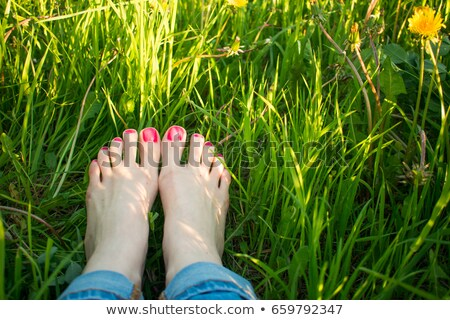 feet on green meadow stock photo © deyangeorgiev