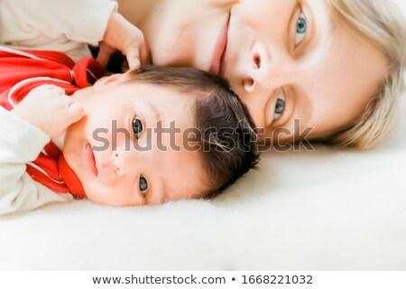 bebê · cordeiro · ovelha · pequeno · caneta - foto stock © meinzahn