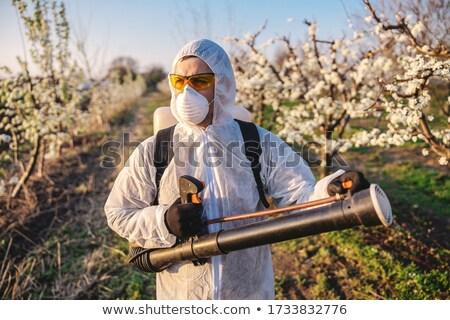 Pesticide spraying. Non-organic fruits. Stock photo © wellphoto