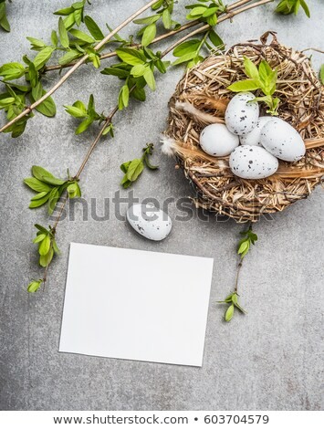 искусства пасхальных яиц весенние цветы синий Сток-фото © Konstanttin