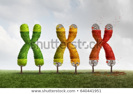 長さ · 医療 · 染色体 · 老化 · DNA鑑定を - ストックフォト © lightsource
