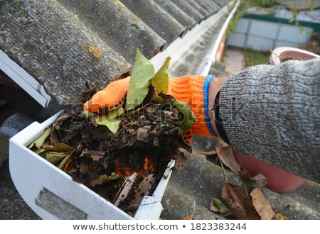 gutter stock photo © Fotaw