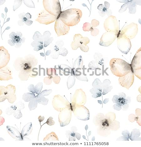 Sem costura aquarela borboletas padrão céu borboleta Foto stock © balasoiu
