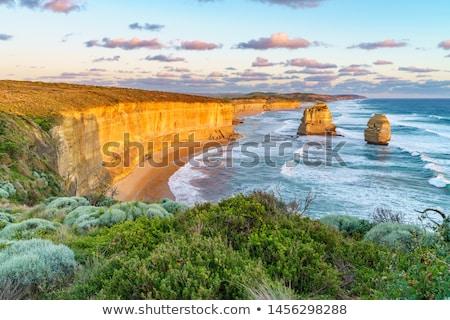 luchtfoto · groot · oceaan · weg · haven · park - stockfoto © dirkr