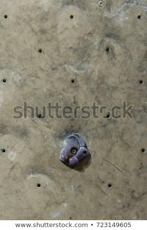 grip on climbimng wall Stock photo © LightFieldStudios