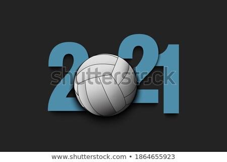 Volleybal moderne vector realistisch geïsoleerd object Stockfoto © Decorwithme