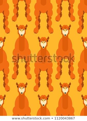 Cammello pattern senza soluzione di continuità animale bestia deserto Foto d'archivio © popaukropa