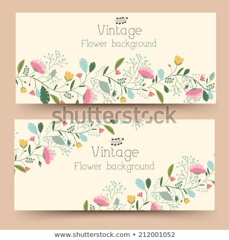 virágmintás · tavasz · piros · bannerek · négy · vízszintes - stock fotó © linetale