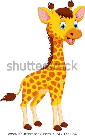 Cartoon giraffa sorridere illustrazione Foto d'archivio © cthoman