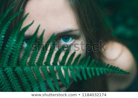 Jesienią kobieta portret pozostawia na zewnątrz spadek Zdjęcia stock © artfotodima