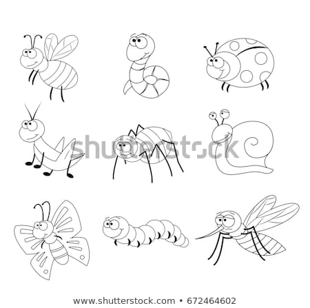 Black And White Mosquito Cartoon Character Flying Stock photo © hittoon