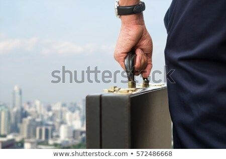 Man Carrying Briefcase Business Activities of Boss Stock photo © robuart