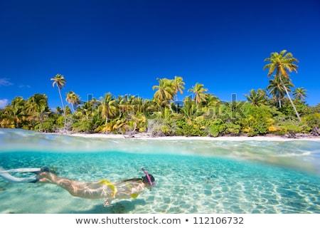 Woman snorkeling in tropical waters in front of exotic island Stock photo © galitskaya
