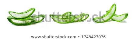 Establecer naturaleza cactus ilustración diseno desierto Foto stock © bluering