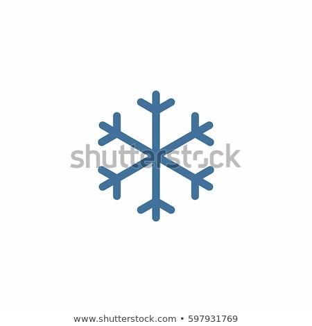 Snow Icon Stock photo © angelp