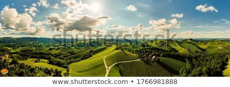 Panoramic view in Styria, Austria Stock photo © borisb17