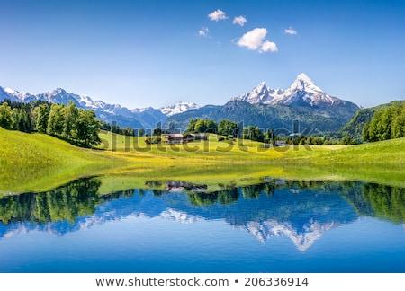Landscape in Alps, Austria Stock photo © borisb17