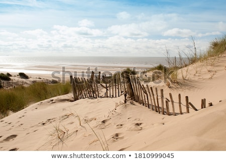 collapsing dune fence stock photo © jsnover