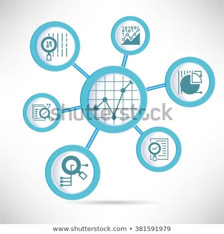 Gegevens analytics cirkel icon lang schaduw Stockfoto © Anna_leni