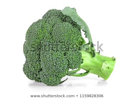 friss · brokkoli · fehér · puha · árnyék · étel - stock fotó © posterize